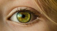 בשלבים שונים של התפתחות הילד, הורים תוהים לגבי הראייה של ילדיהם, והצורך בבדיקת ראייה, כשבכל בשלב מסוים בדיקת ראייה של הילד היא הכרחית. המודעות לחשיבות בדיקות הראייה והעין של ילדים […]