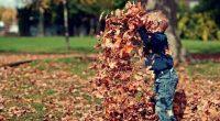 בממוצע, אחד מתוך עשרה ילדים מתחת לגיל 14 הינו בעל צרכים מיוחדים, הסובל ממוגבלות פיזית, קוגניטיבית, רפואית, או מחלה כרונית מסכנת חיים. גידול ילד עם הפרעה או צורך מיוחד הוא […]